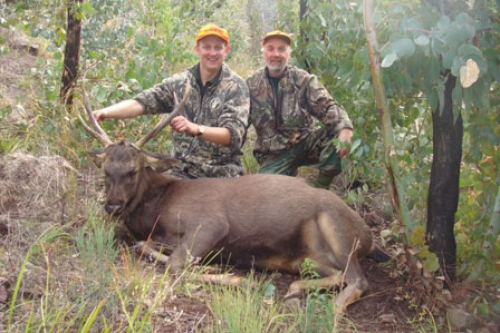 John Bruce - Sambar Deer Success Story