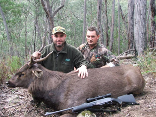 Andrew Winwood - Sambar Deer Success Story