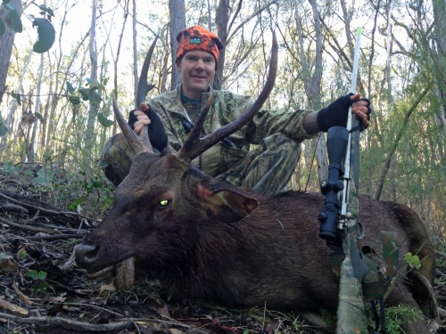 Andy Ziems - Sambar Deer Success Story