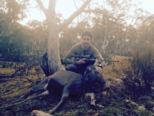 Dave Parker - Sambar Deer Success Story