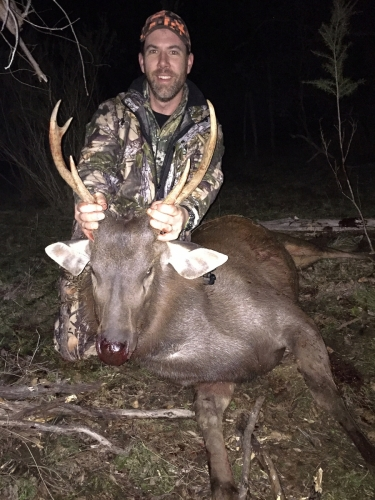 Michael Mann - Sambar Deer Success Story