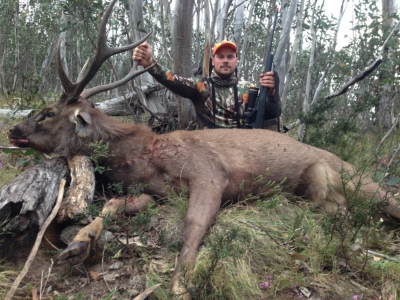 Joe Mangan - Sambar Deer Success Story