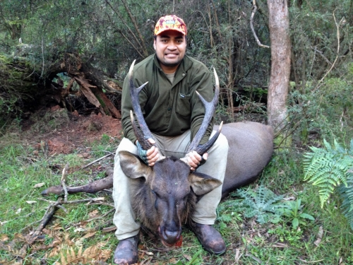 Mafi Parutua - Sambar Deer Success Story