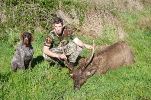 Michael Pritchard, Melbourne - Sambar Deer Success Story