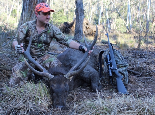 Steve Kruger - Sambar Deer Success Story