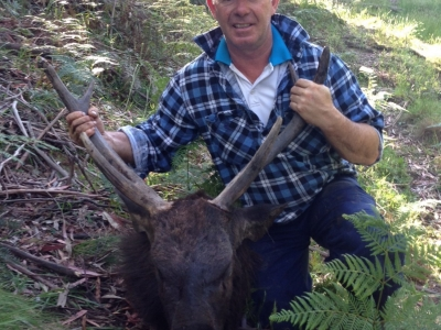 Tony Quinnell - Sambar Deer Success Story