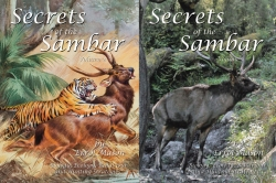 Secrets of the Sambar Vol 2 & 3 - 2 Volume Set
