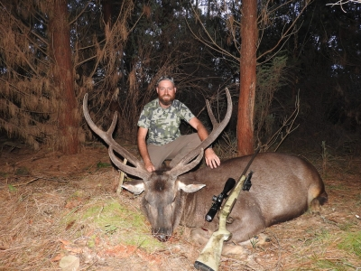 Clint Collings - Sambar Deer Success Story
