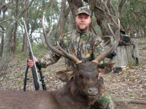 Chris Mills - Sambar Deer Success Story