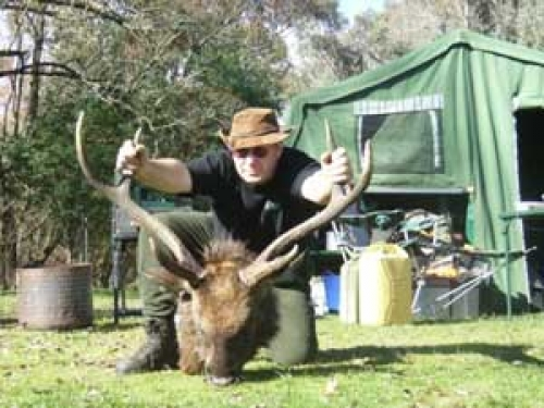 Dale Wesley - Sambar Deer Success Story