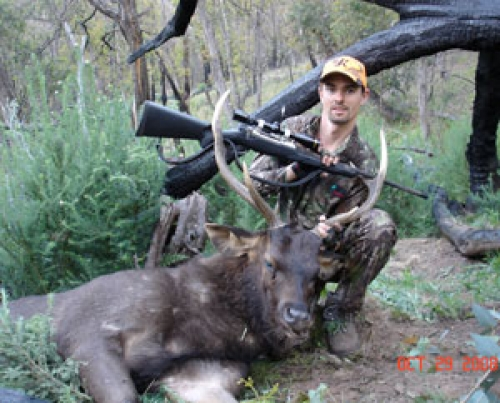 Ben Donegan - Sambar Deer Success Story