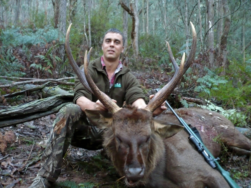 Paul Giltrap - Sambar Deer Success Story