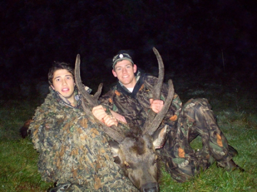 Sam Van Assche - Sambar Deer Success Story