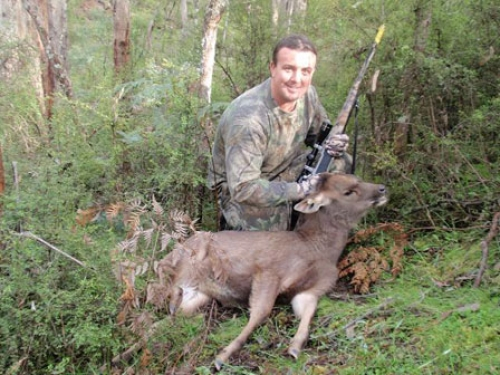 Shane Costello - Sambar Deer Success Story