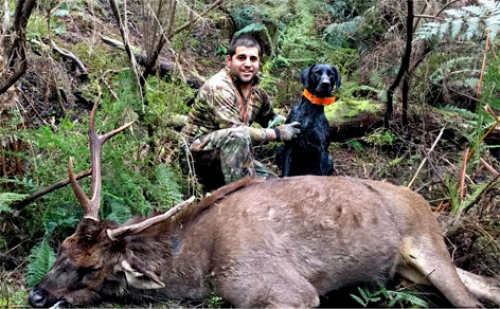 Steve Motta - Sambar Deer Success Story