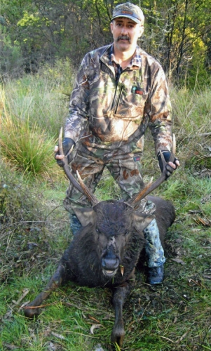 Leon Alexander - Sambar Deer Success Story